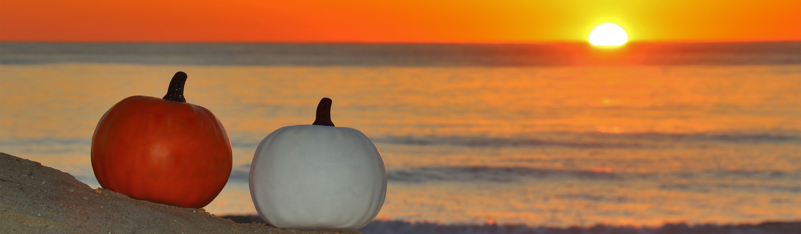 an orange and a white pumpkin on the beach with sunrise in the background over the water